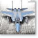 1/48 F-15C Eagle MSIP II Limited Edition