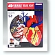 1/1 4D Human Anatomy: Deluxe Heart Anatomy Model