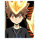 Tsuna Battle Clear File