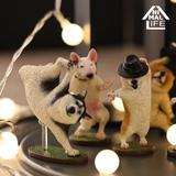 ANIMAL LIFE Dancing Dog 1 Box 8pcs (Reissue)