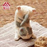 ANIMAL LIFE Baby Yoga Cat: 1 Box (6pcs)