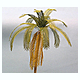 1/35 Palm Tree Paper Plant Kit