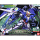 1/100 GN-0000 + GNR-010 00 Raiser Special Set