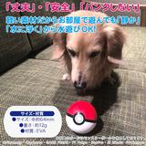 Pet Goods: Pokemon Pet Toy - Poke Ball