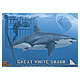 1/18 Great White Shark w/Diver & Shark Cage