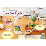 Petit Terrarium Longing for Country Life 1 Box 6pcs
