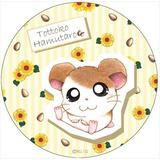 Hamtaro: Hamtaro Can Mirror